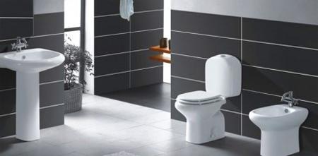 Портативные биде для туалетов
